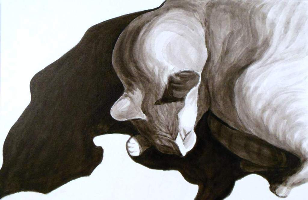 Cat shadow, Dog Studies, high contrast black acrylic painting, Elizabeth Lisa Petrulis