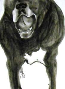 Doug speaks 1, Dog Studies, high contrast black acrylic painting, Elizabeth Lisa Petrulis