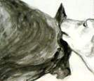 Lick, Dog Studies, high contrast black acrylic painting, Elizabeth Lisa Petrulis