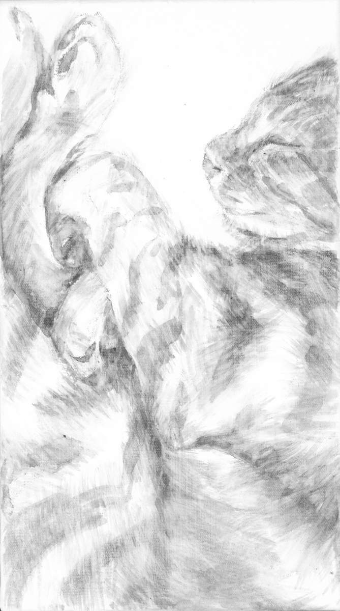 intimate portrait of sleeping cat focusing on the soft tangle of legs and serene face. Black and white acrylic painting by Elizabeth Lisa Petrulis.