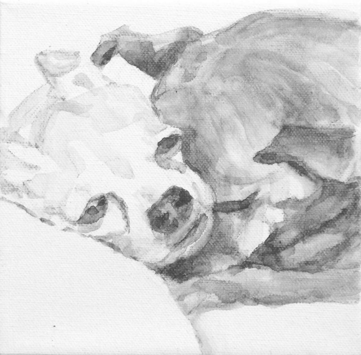 intimate portrait of two Chihuahua dogs snuggling. Black and white acrylic painting by Elizabeth Lisa Petrulis.