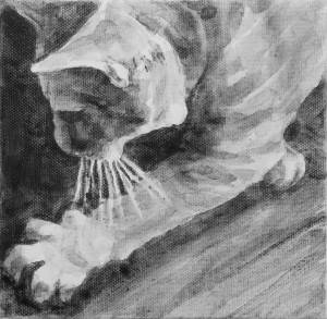 Intimate pet portrait showing a outstretched arm with a splay of cat paw and whiskers. Black and white acrylic painting by Elizabeth Lisa Petrulis