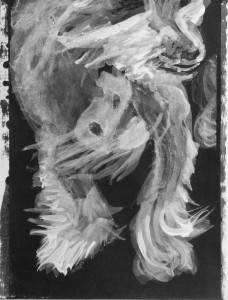 intimate image of a Chinese Crested dog, showing spotted hairless chest and wispy fur on feet and face. High contrast acrylic sketch by Elizabeth Lisa Petrulis