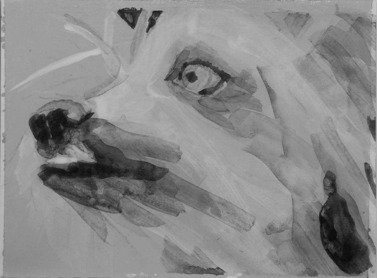 intimate portrait head of a Chinese Crested dog, quick acrylic painting by Elizabeth Petrulis