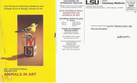 LSU animals in art postcard