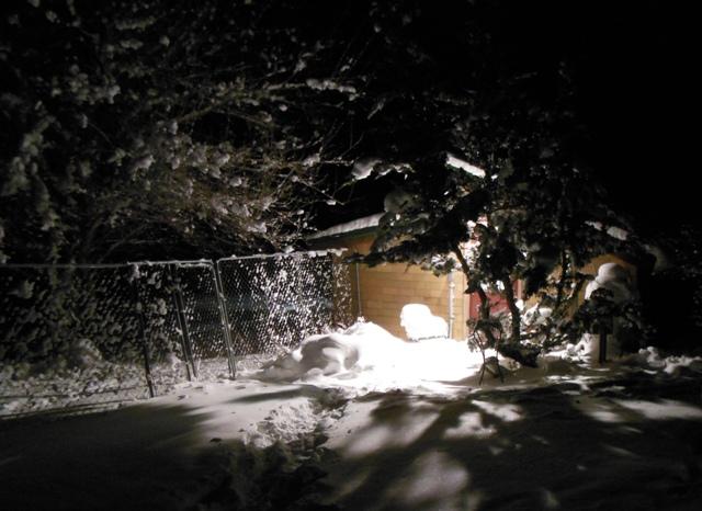 petrulis studio at night in the snow