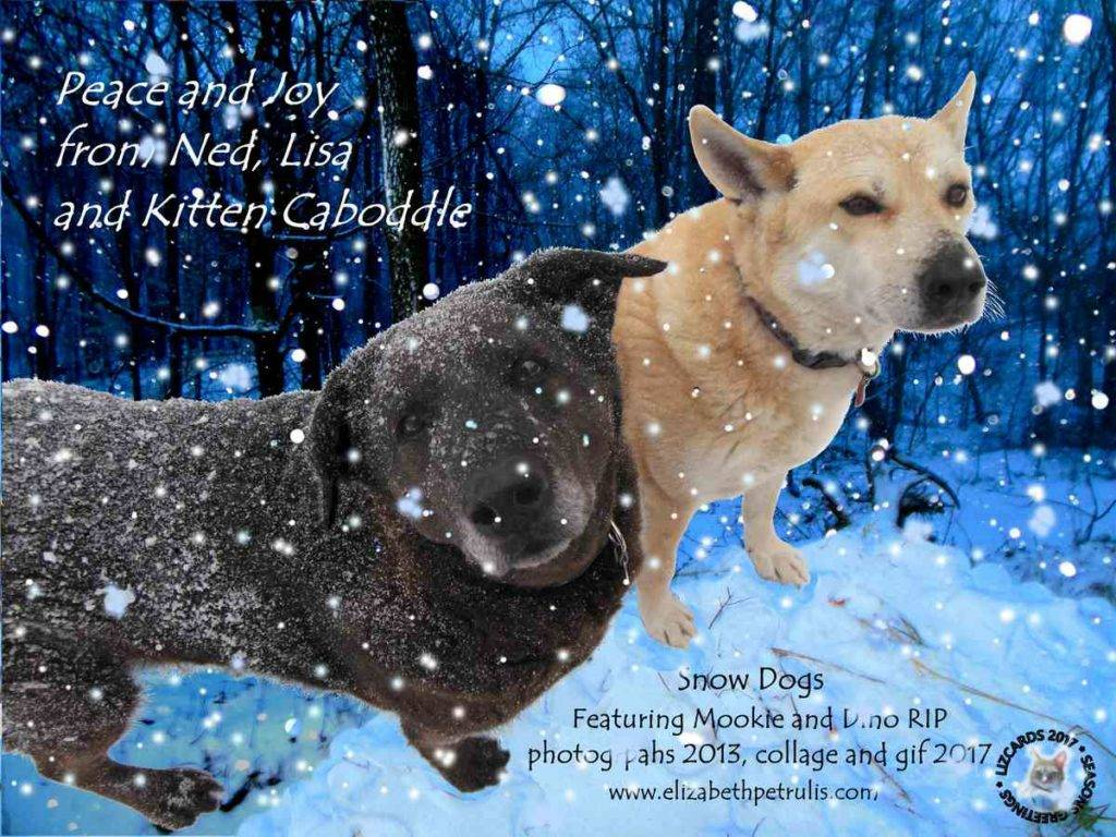 Seasons greetings from snow dogs Mookie and Dino!