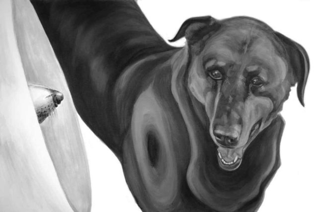 Black and white painting of two dogs, one seen only by the tip of its nose through his medical collar.
