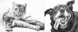 "Gallery cover picture for ""Limbs 2 and Tongues"" showing Akimbo (a cat looking up from grooming with legs pointing all directions),and Doug (a dog ears up and tongue hanging low to the sides). Black and white acrylic portraits by Elizabeth Lisa Petrulis."