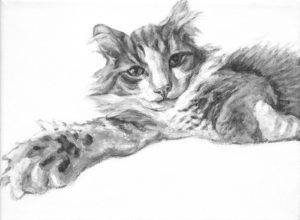 Painting of a resting cat with paw extended toward the viewer. Fluffy cat with tuxedo markings painted by Elizabeth Lisa Petrulis.