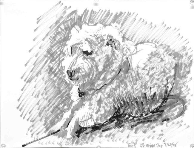 "Fluffy white dog drawing: Hsiao dog 1, 2018, acrylic paint pens on paper, 11"" x 14"", Elizabeth Lisa Petrulis"