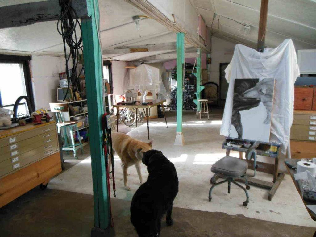 a view down the long studio before the dividing wall in 2013 with two dogs