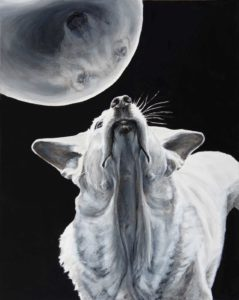Dog looks straight up emphasizing its neck and jowls. Above is an orb which reflects back its face. Strong light illuminates the dog from above, hitting the ears snout and back, and the outline of the orb against a black background.