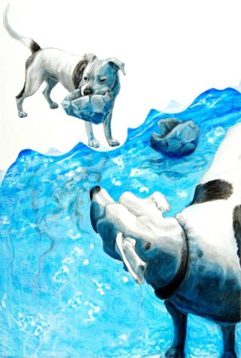 Double portrait of a black and white American Pit Bull dog. In the foreground he cranes his neck backward looking across a body of water at himself clutching a deflated ball in his jaw. On the choppy water floats another deflated ball and the far dogs reflection undulates.
