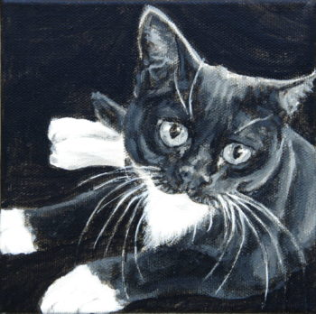 "Melvin, 2019, black and white acrylic on canvas, 6"" x 6"", Elizabeth Lisa Petrulis"