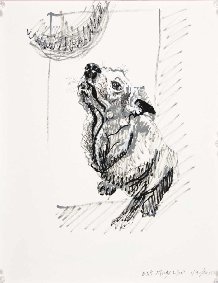black and white drawing of seated dog looking up toward an orb