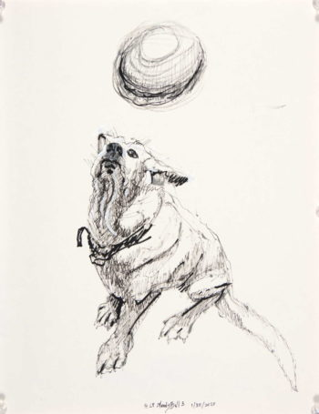 black and white drawing of seated dog looking up towards a ball