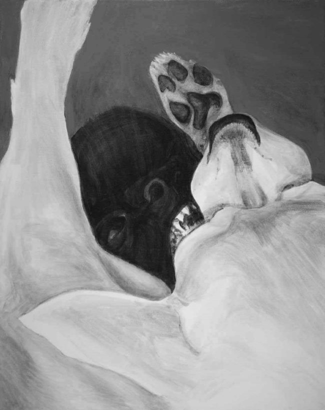 painting of black and white dogs wrestling