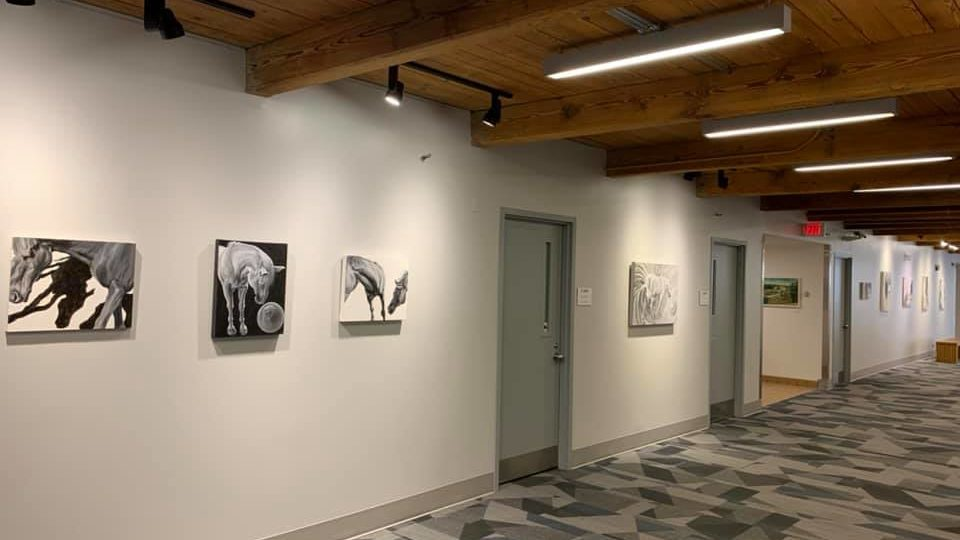 Horse paintings by Elizabeth Lisa petrulis installed at Rose-Hulman Institute of Technology 2020
