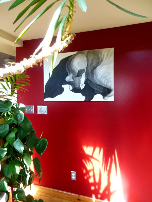 painting cat shadows installed on a red wall with a green plant in the foreground