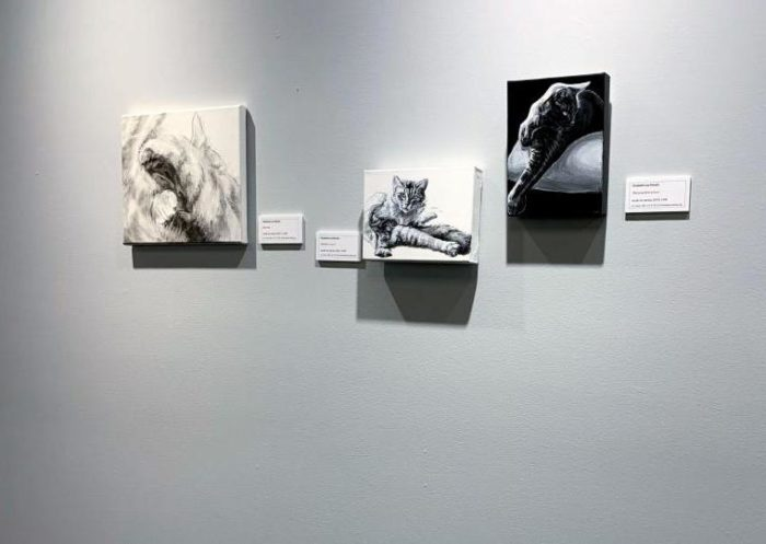 three cat paintings featuring legs and paws