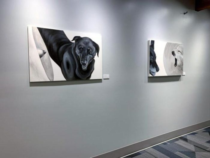 dog portraits megaphone and megaphone yawn from the medical collar series installed at rose-hulman