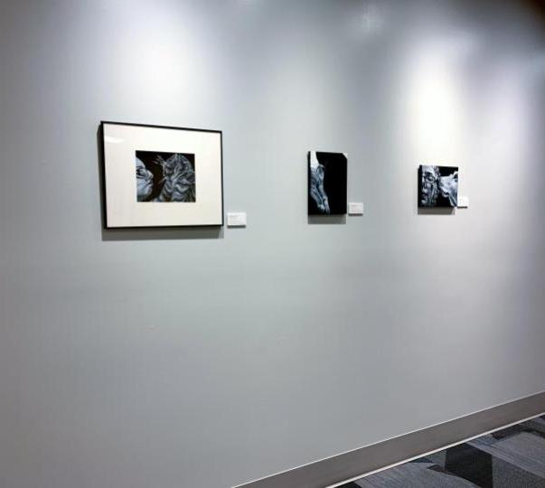 3 paintings on display at Rose-Hulman, Me and the Rascall II, Topper and Lucy, and Self portrait with Dino
