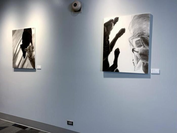 limbs and shadow legs installed at Rose-Hulman
