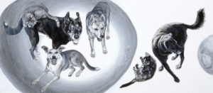 A family portrait of cats and dogs arranged in and around two mysterious orbs. The orbs contain some animals and reflect others, all who gaze intently. A black and white acrylic painting by Elizabeth Lisa Petrulis.