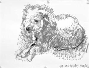 "Hsiao dog 2, 2018, acrylic paint pens on paper, 11"" x 14"", Elizabeth Lisa Petrulis"