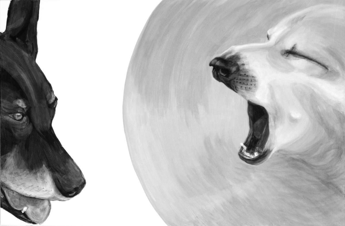 "Megaphone Yawn, 2015, Dog Studies, Medical Collar Series, acrylic on canvas, 24"" x 36"", Elizabeth Lisa Petrulis"