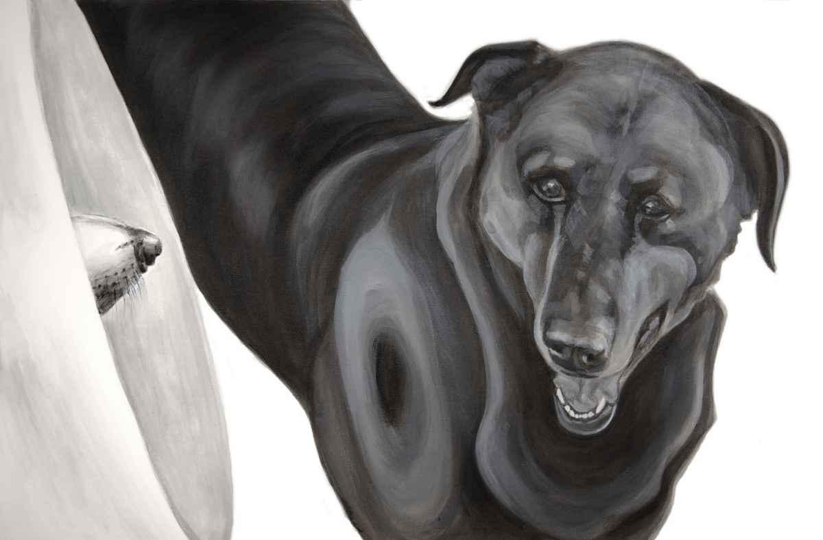 "Megaphone, 2015-2017, Dog Studies, Medical Collar Series, acrylic on canvas, 24"" x 36"", Elizabeth Lisa Petrulis"